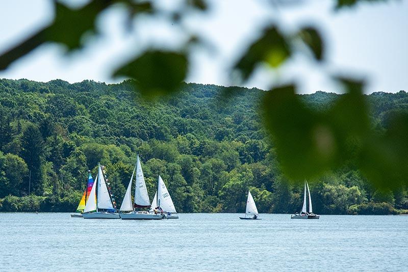 Regatta Sailing Races